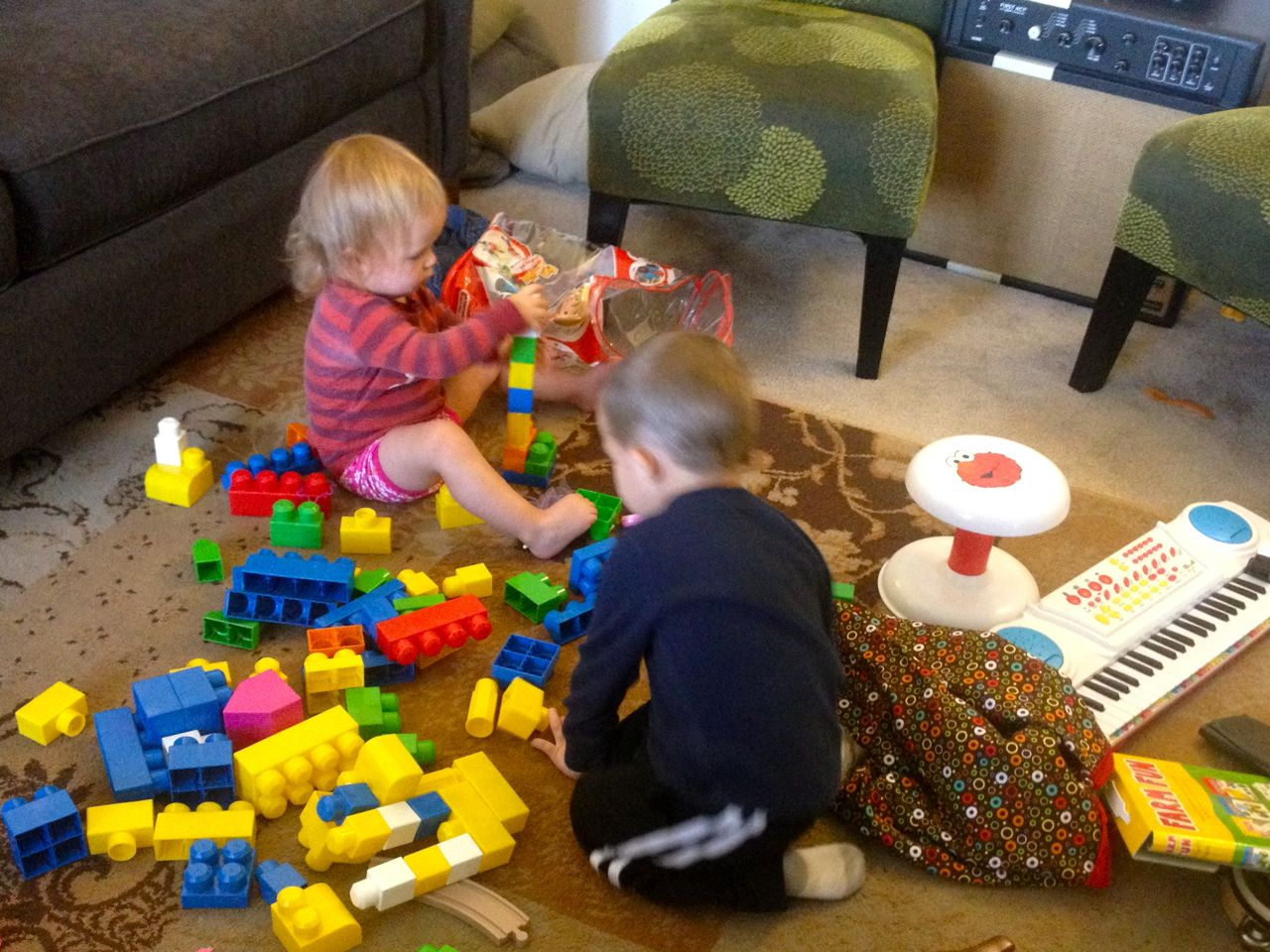 Paisley-playing-legos